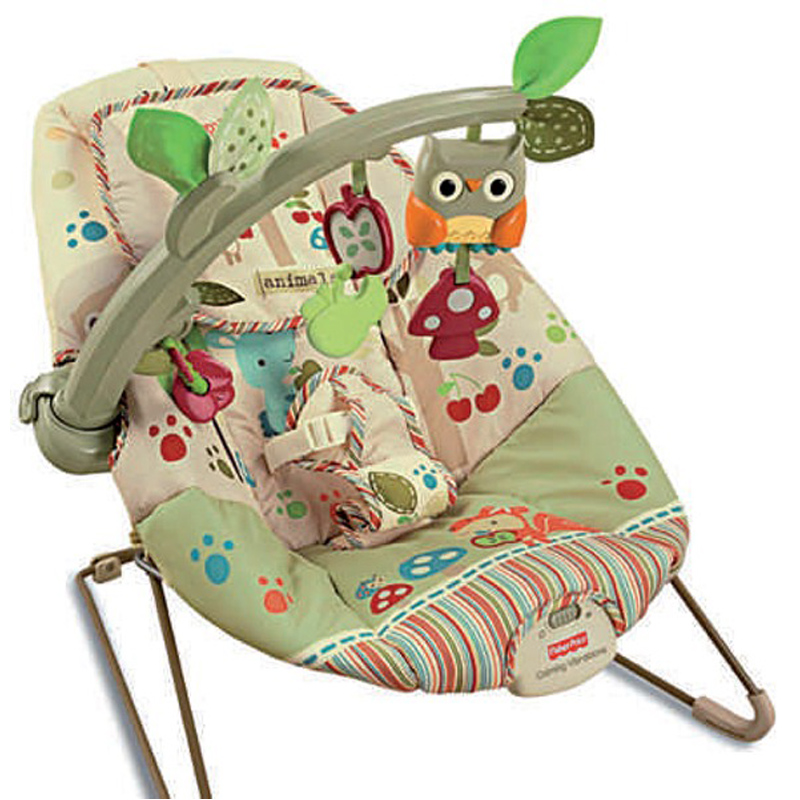 4b58fcd1d Fisher Price Woodsie Friends Baby Bouncer NEW